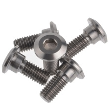 Big discounting for Grinding Parts High Strength Titanium Ti Bolts export to Kiribati Supplier