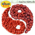 Medlar Barbary Wolfberry Fruit Organic Goji