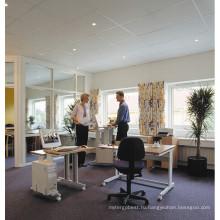 Офисная Эргономичная Мебель Компьютерный Стол Рабочей Станции