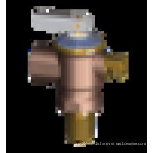J5071 Warmwasserbereiter Teil Druck- und Temperaturerweiterungsventil, PTR-Ventil, Druckreduzierventil, Wasserzeichen vorhanden