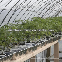 vegetables greenhouse mesh panel manufacturer