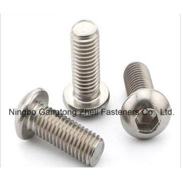 ISO 7380 Round Head Hexgone Socket Cap Screw