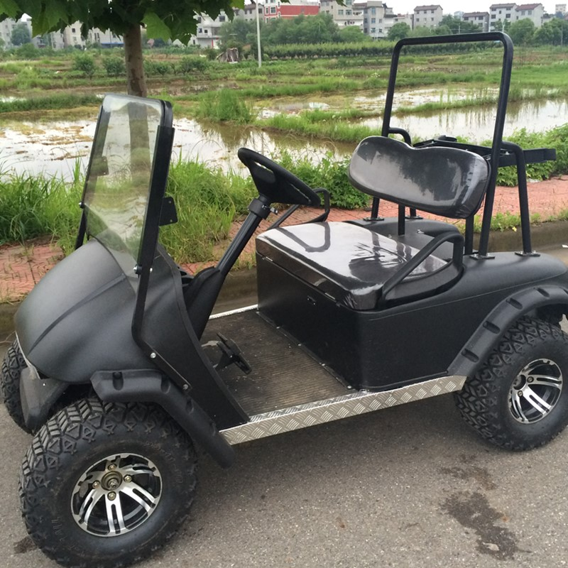 2 Seater Gas/Electric Golf Cart