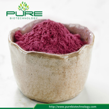 Warm te koop 100% puur Freeze Dried Cranberries Powder