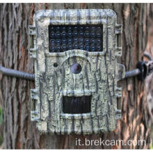 Nature Review HD Trail Camera con visione notturna