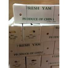 Exporting Good Quality Yam (Dia: 2-3cm)