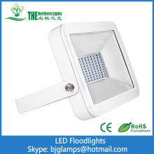 50W LED Floodlights of IP65 Outdoor Lighting