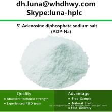CAS: 20398-34-9 ADP-Na / Adenosina 5'-Difosfato Sal Monosódica