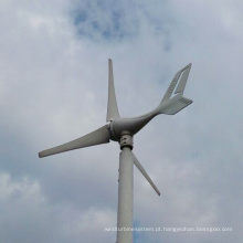 Preço pequeno da turbina eólica