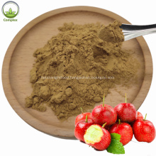 Supply Pure Natural Organic Dried Hawthorn Extract