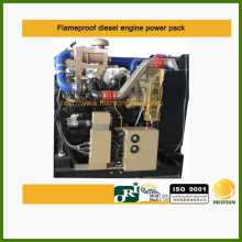 Zone 2 Flameproof Diesel Engine