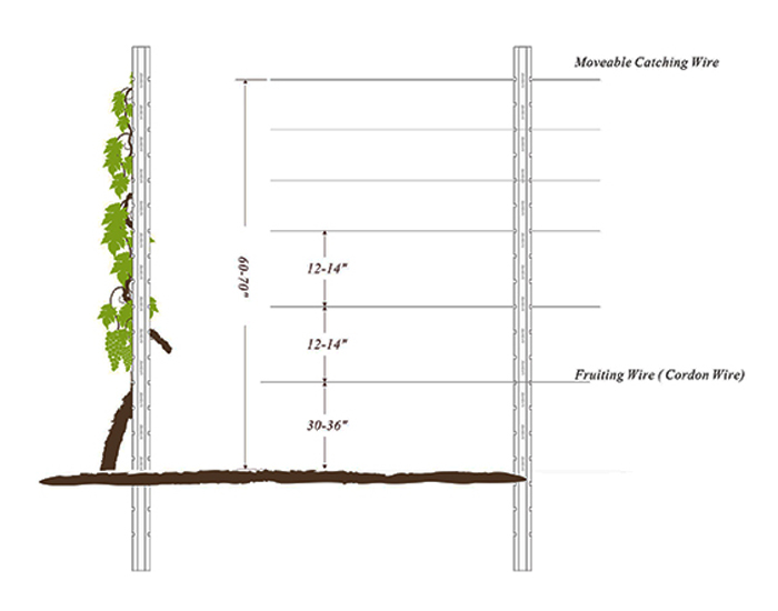 Snap-in Vertical Trellis System