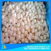 frozen scallop bay scallop supplier