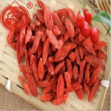 B Grade Goji Berry Conventioneel Goji Berry Fruit