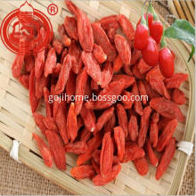 Foodstuff Dried Goji Berry Fruit Berries Goji Fruit