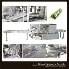 High Speed Horizontal Pillow Packing Machine for Vegetable and Fruit