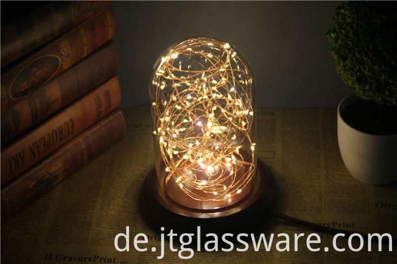 Glass Dome With LED Lights