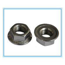 Hexagon Head Flange Nuts (DIN6923)