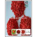 2016 Geschenk Verpackung Bio Goji Beeren gefrorene Mispel 2016 Geschenk Verpackung Bio Goji Beeren gefrorene Mispel