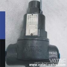 Flansch RF / FF / NPT / Gewinde / Bw / Sw End Thermostat Kondensatableiter
