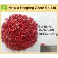 Té de hierbas Wolfberry secada comercial del níspero de la fruta