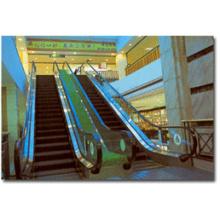 Escada rolante pesada do tráfego para o centro comercial (IE20)