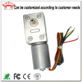 Brushless Dc Motor With Worm Gearbox