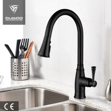 Torneiras de encanamento Matte Black Pull Out Spray Faucet