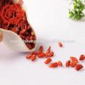 Ningxia séché miracle fruits baies de goji Lycii fruits Ningxia gouqi