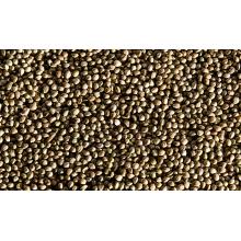 Alimentos para venda sementes de cânhamo de alta qualidade
