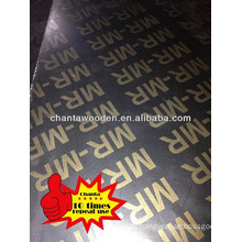 14mm poplar core film faced plywood Thailand market