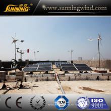 Низкий уровень шума генератор энергии ветра (Макс 400Вт)