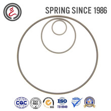 Oil Seal Springs for Many Kinds Sealing Element