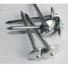 Best Price Common Roofing Nails Factory