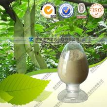 Chinese Honeylocust Fruit P. E. -5: 1 10: 1 20: 1