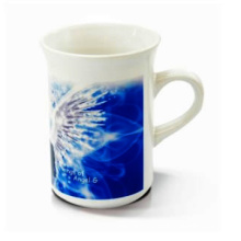 2014New Cheap 10oz Beaker Mug Ceramic Sublimation Mug Heat Press Mug