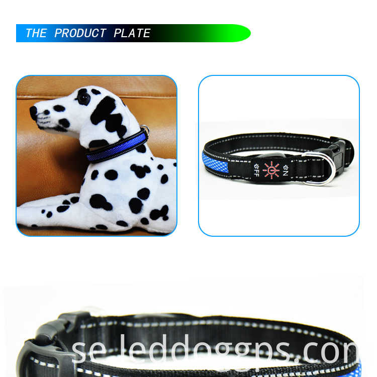 Night Time Dog Collars