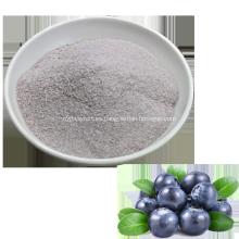 Polvo de jugo de fruta de arándano natural soluble instantáneo
