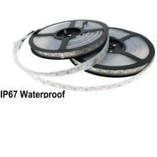 High Lumen DC12V waterproof Flexible SMD5050 RGBW LED LED Strip Light