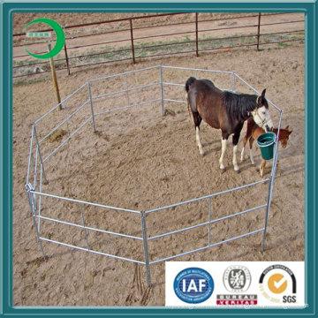 Оцинкованная крупнорогатого скота / Corral (XYL20133)