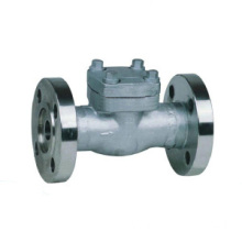Cast baja Swing Check Valve