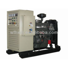 Hot sale 8KW to 140KW Ricardo power generator