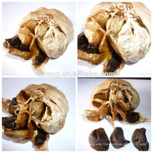 2014 new chinese Fermented black garlic producer