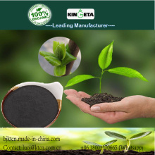 Effect organic carbon based fertilizer for vegetables