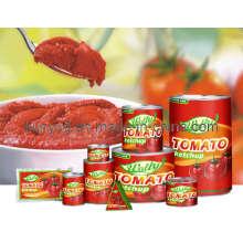 Pâte de tomate en conserve avec bon prix
