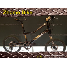 Vélos/gauche côté vélo/Special/Customerized vélo Bike/Velo vélo Zh15zpz01
