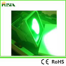 30W grünes Licht LED Flutlicht Landschaftsbeleuchtung / Park Licht