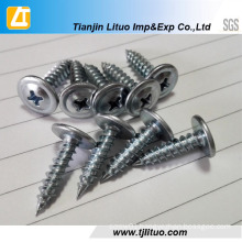 Truss Phillips Head Self Tapping Screw with Zinc Plated
