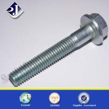 Made in China Gute Qualität Zink Finish Hex Flansch Schraube