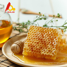 Pure natural bee honey comb for buyers